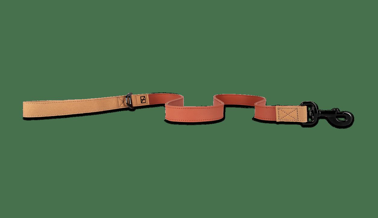 Herzog dog leash in terracotta style