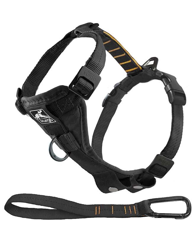 Kurgo dog harness for the car