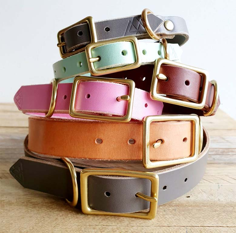Different colours leather dog collars