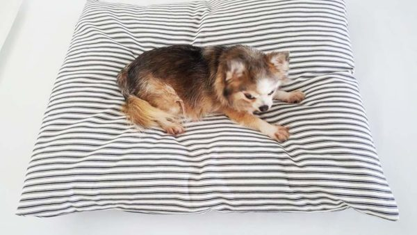 Dog relaxing on a dog bed