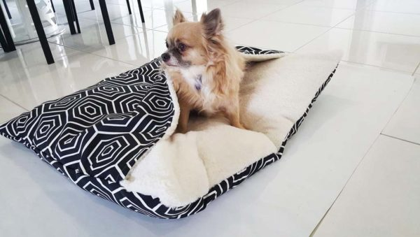 Dog peeking out of cave bed