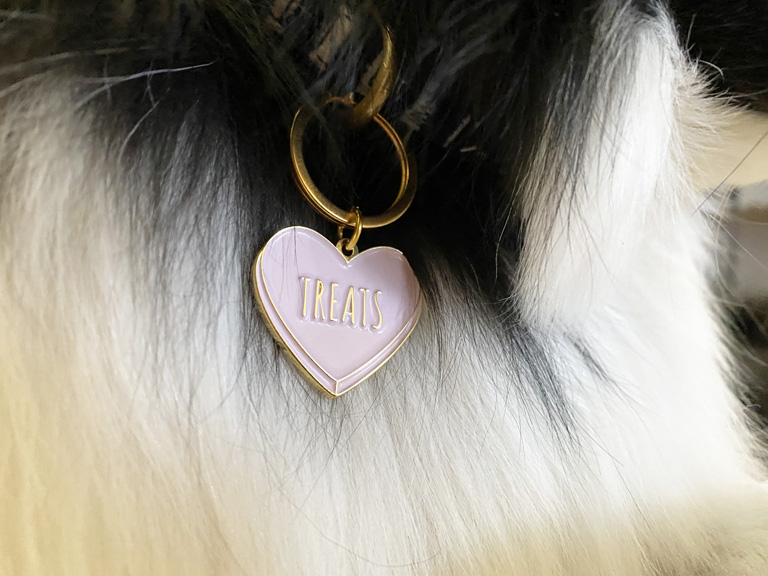 "Dog wearing a pink dog tag shaped like a heart and saying ""Treats"""