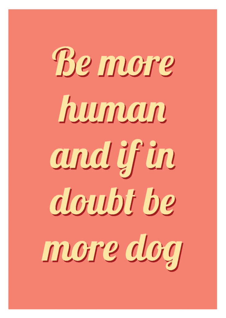 """Wallpaper """"Be more human and if in doubt be more dog"""""""