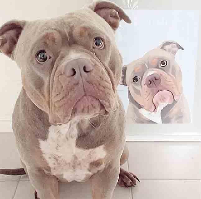 Dog posing next to their custom pet portrait